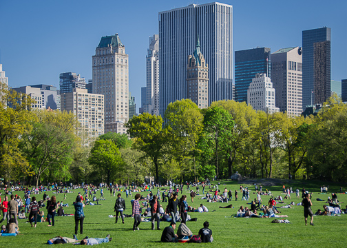 sheeps meadow central park nyc