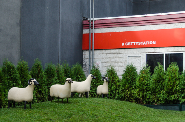 getty station sheep station chelsea, nyc