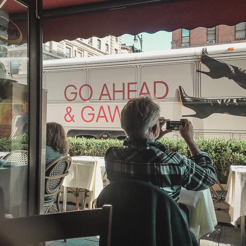 go ahead and gawk