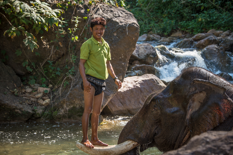 Green Hill Valley Elephant Camp in Kalaw, Myanmar
