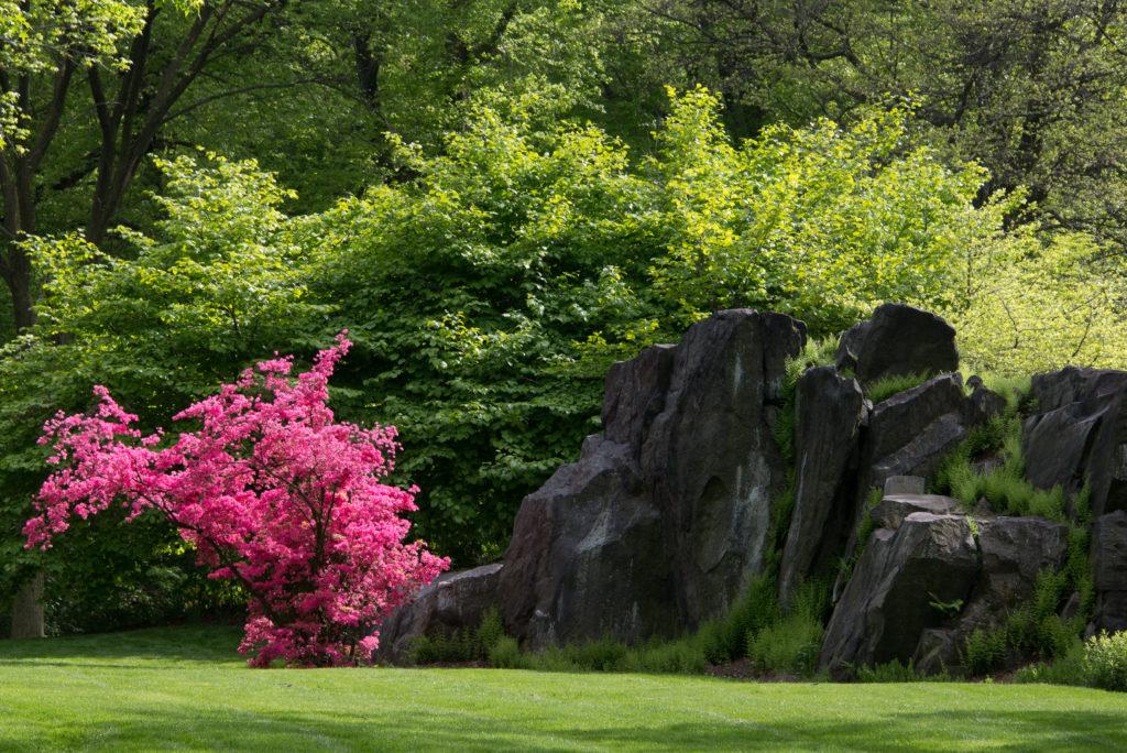 Spring At The New York Botanical Garden Gotham Girl Chronicles